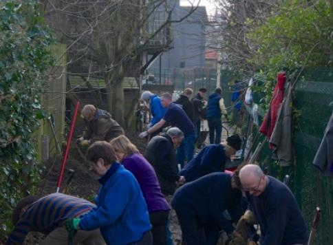Large group of people cleaning the area