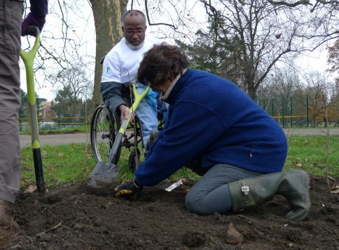 Southall Orchard Project: Southall Park - Final Phase