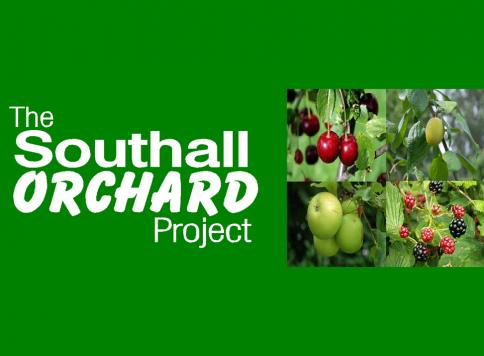 Southall Orchard Project - Phase 1a